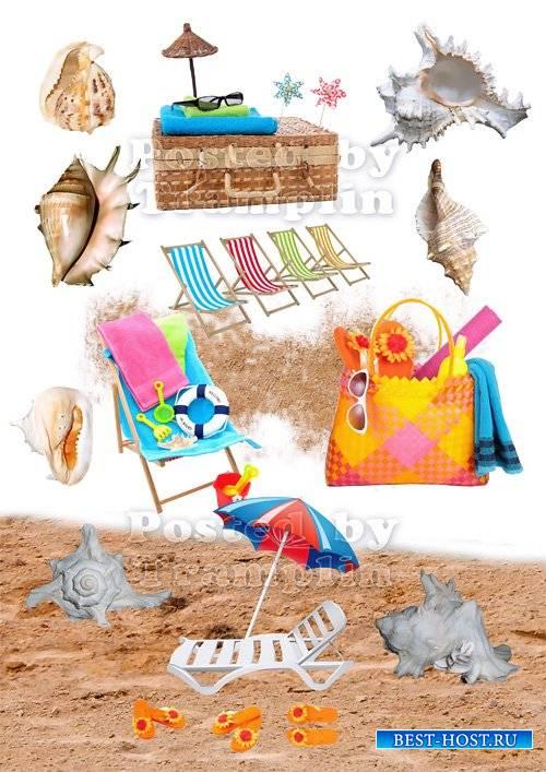 Летний клипарт – Пляж, песок, ракушки