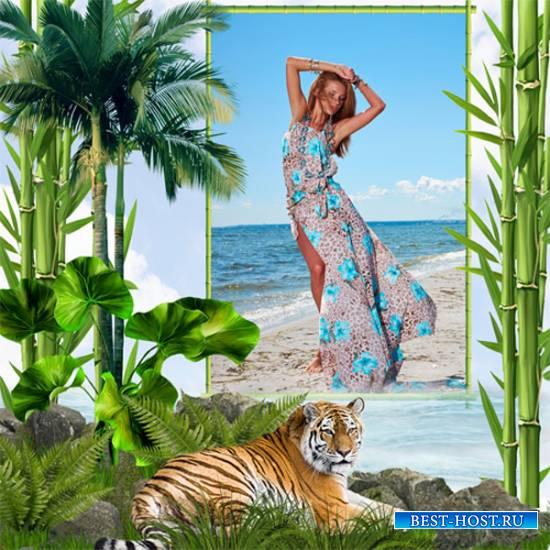 Рамка женская – Бамбуковый рай