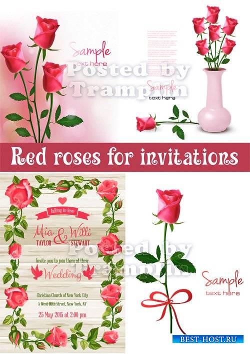 Розы в векторе для пригласительных и открыток
