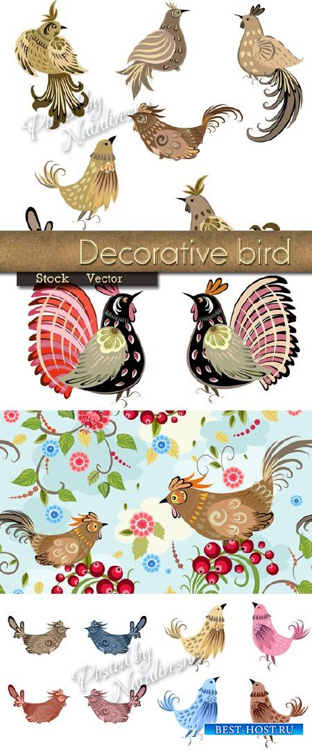 Декоративные красивые птички в Векторе