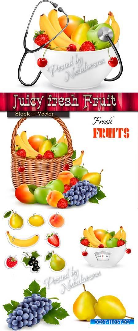 Сочные свежие фрукты для здоровья и диеты в Векторе