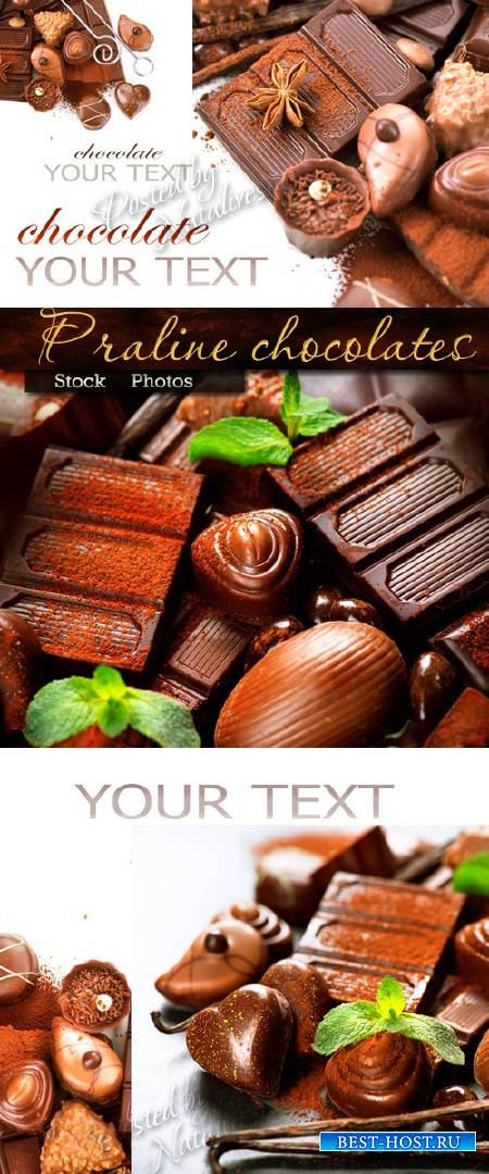 Шоколадные конфеты пралине и листочки мяты – Stock photo