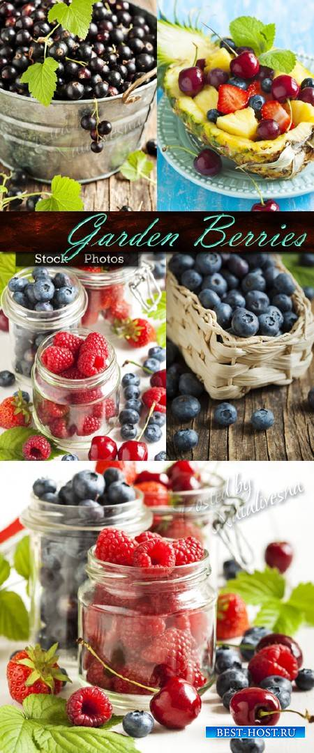 Садовые ягоды в стеклянной банке и плетеном лукошке