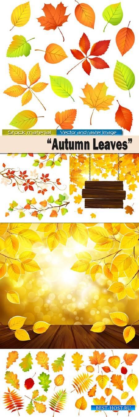 Яркие осенние листья в Векторе