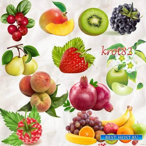 Клипарт на прозрачном фоне  – Спелые и сочные ягоды и фрукты