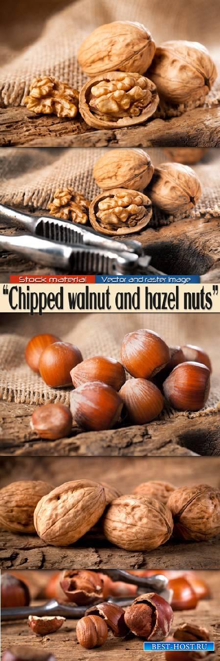 Колотые грецкие и лесные орехи