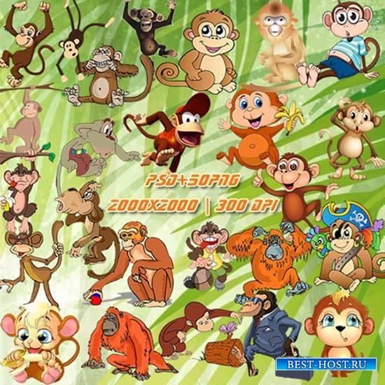 Клипарт - Обезьяны и обезьянки на прозрачном фоне