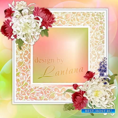 Psd исходник - Веточки осенней хризантемы, солнечная радость для души