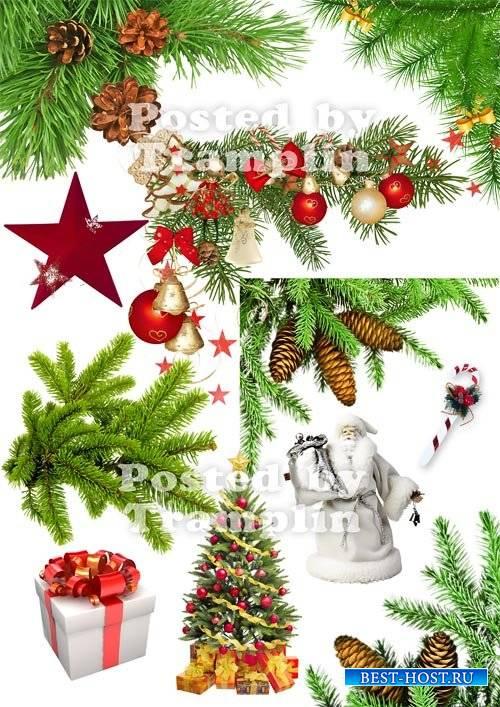 Клипарт  Новогодний – Хвойные ветки, подарки, дед мороз
