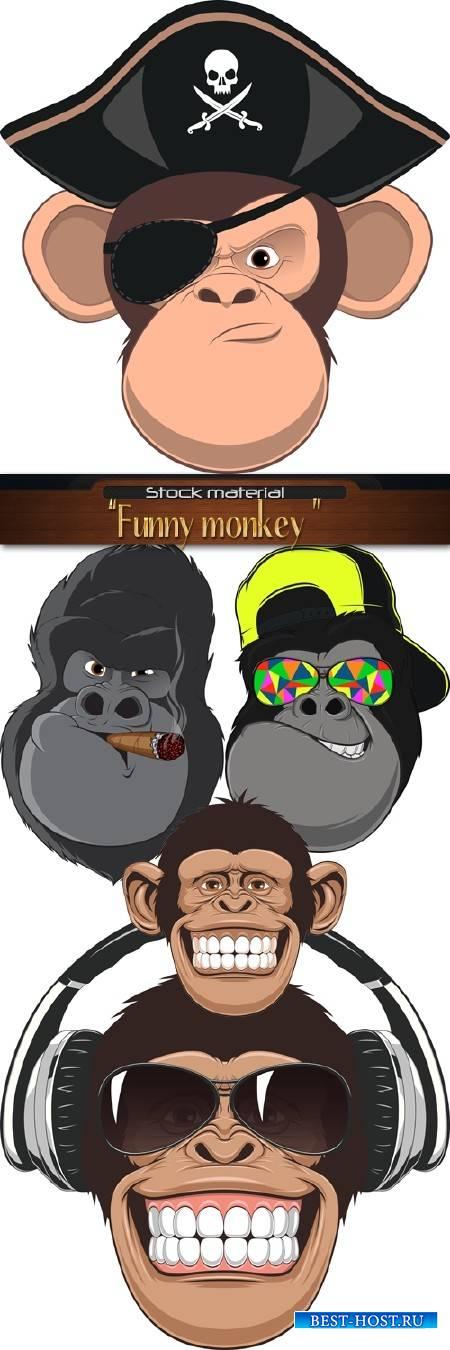 Прикольные обезьяны в очках, наушниках и сигарой
