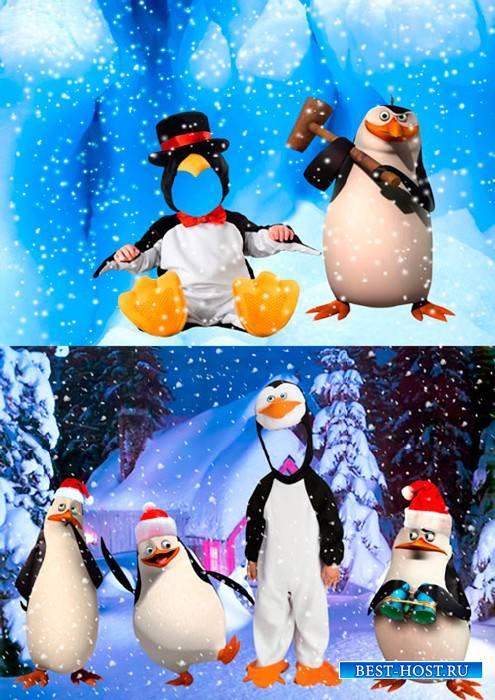 Шаблоны для фотошопа  - Пингвины