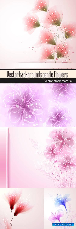 Vector backgrounds gentle flowers