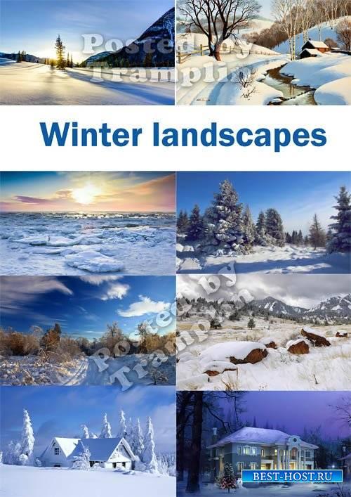 Зимние фоны – В белых одеждах леса