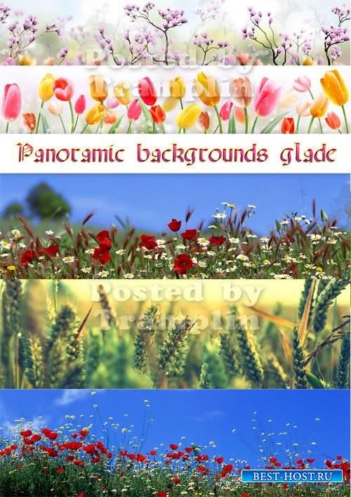 Весенние фоны – Панорамные фото цветов, поляны