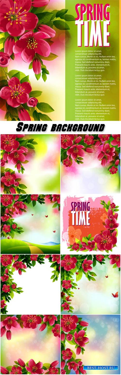 Spring vector background, cherry blossom