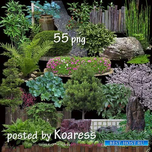 Элементы ландшафтного дизайна на прозрачном фоне - Кусты, клумбы, камни, трава, изгороди