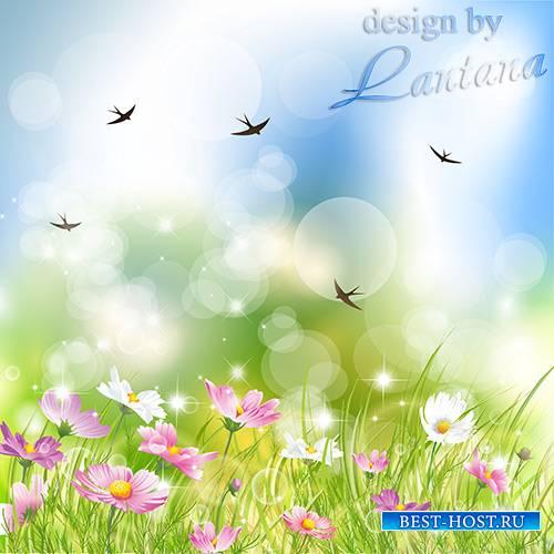 PSD исходник - Луг весенний, цветочное море, изумительно чудный ковёр