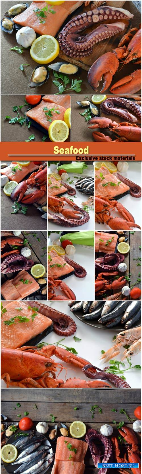 Seafood, lobster and octopus, fish