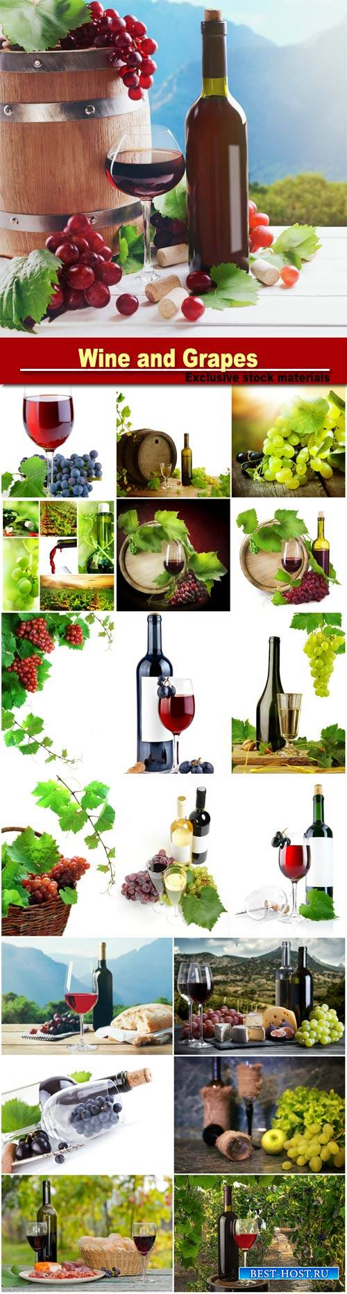 Wine and Grapes, grape leaves on a white background