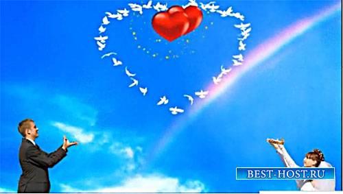 Футажи свадебные - Где любовь,там голуби
