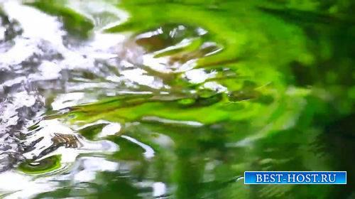 Футаж - Движение воды в ручье