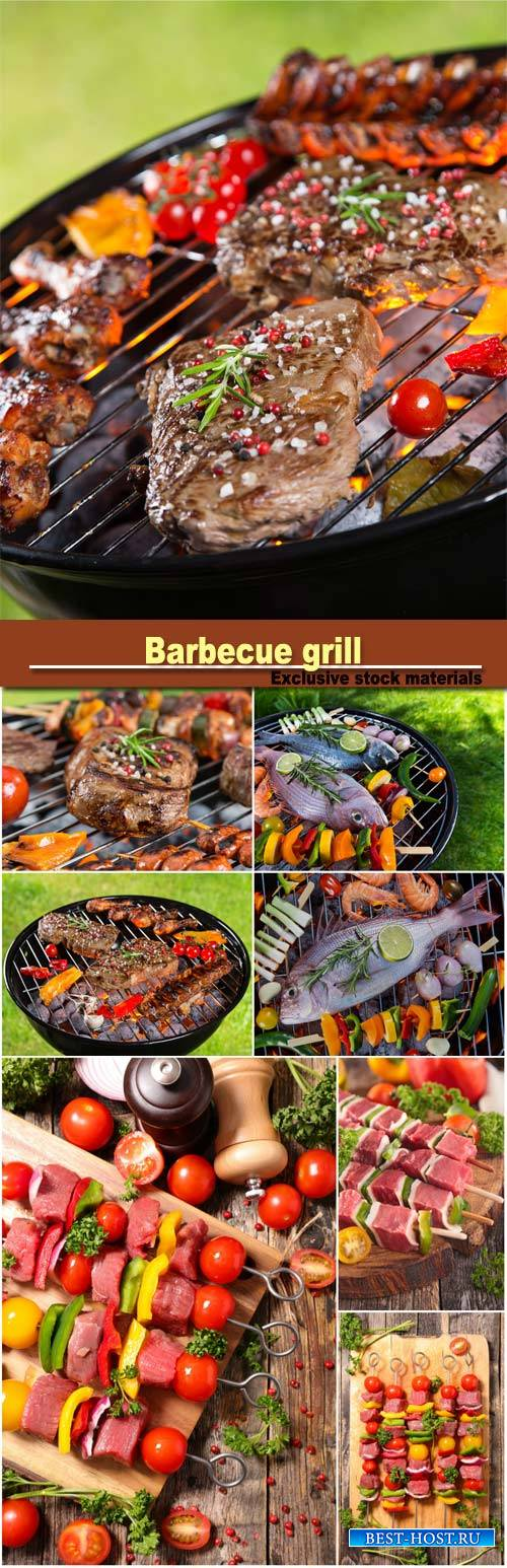 Barbecue grill with sea fishes