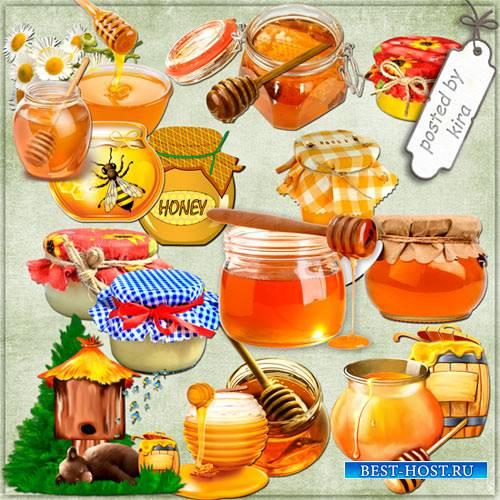 Клипарт к медовому спасу - Баночки с медом