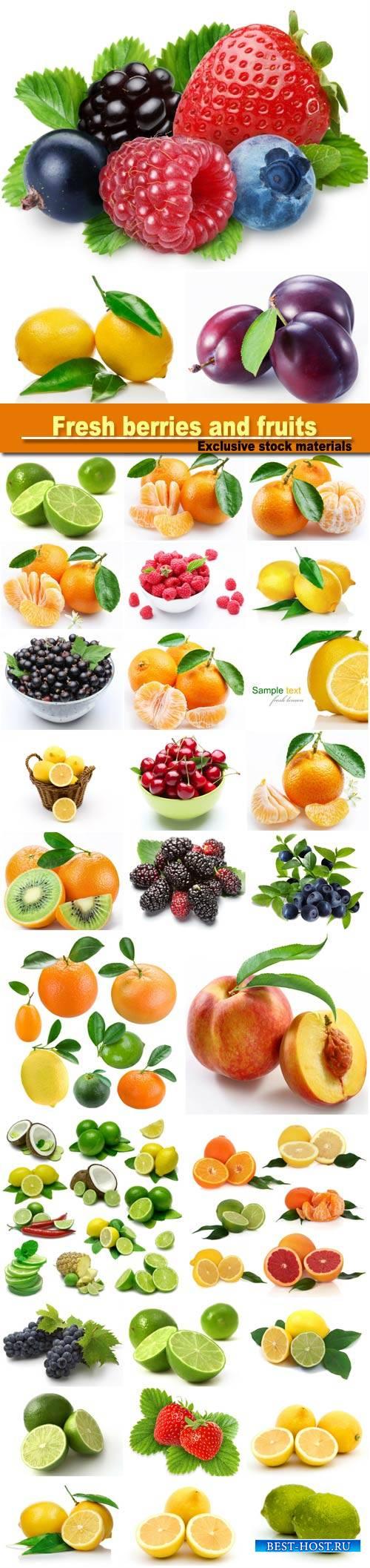 Fresh berries and fruits: orange, lemon, strawberry, watermelon, raspberry, ...