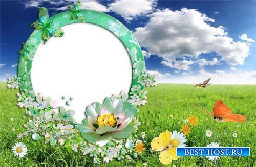 Рамка для фотошоп - Зеленая полянка с бабочками