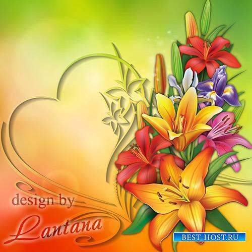PSD исходник - Лилий многоцветья краской взорвались