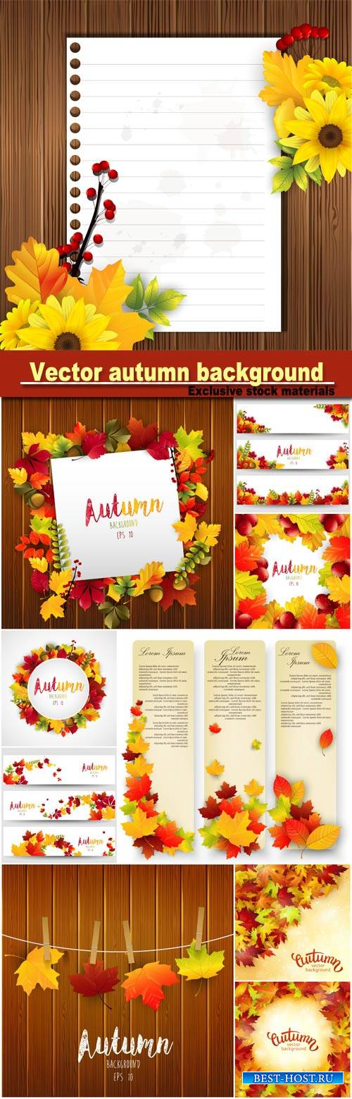 Vector background with colorful autumn leaves, card template, natural backg ...