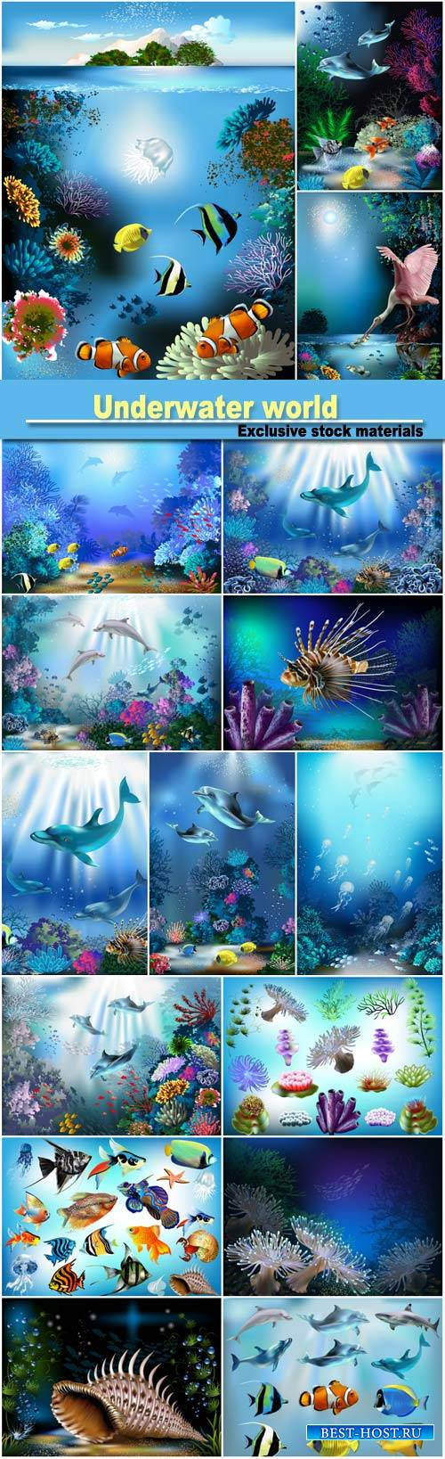 Underwater world, fish and dolphins