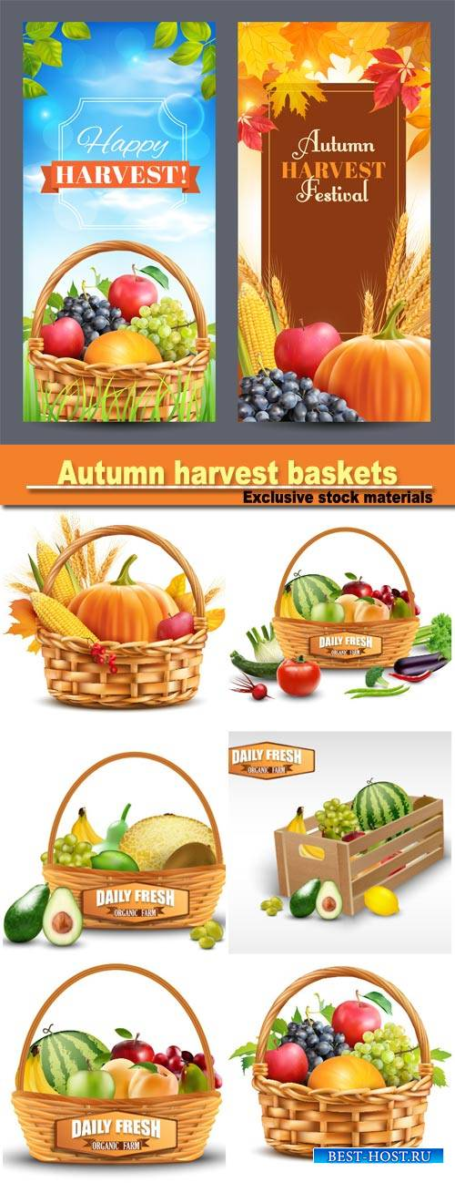 Autumn harvest baskets with vegetables vector