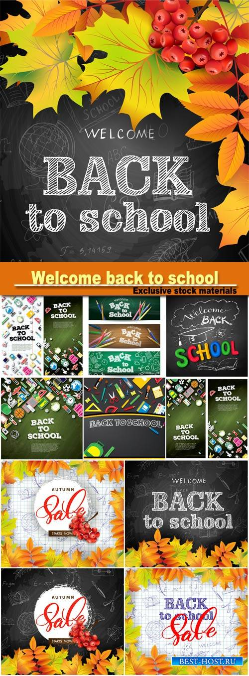 Welcome back to school background with bright autumn leaves, vector illustration