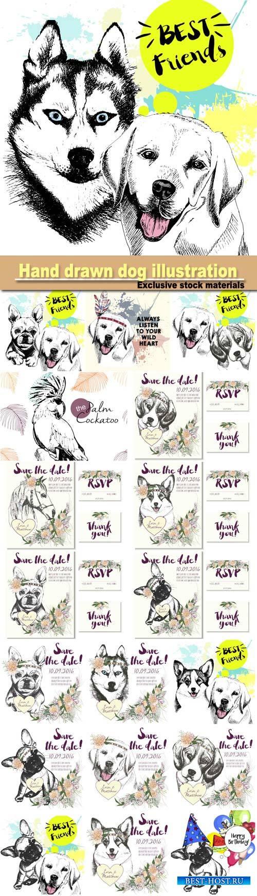 Color hand drawn domestic dog illustration, animal vector