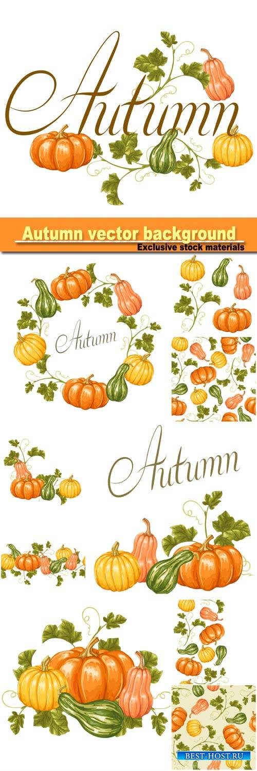 Autumn background with pumpkins, decorative illustration from vegetables and leaves