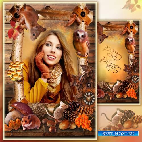 Рамка для фото - Осенний портрет с дарами леса