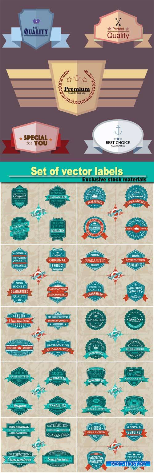 Set of vector labels and badges