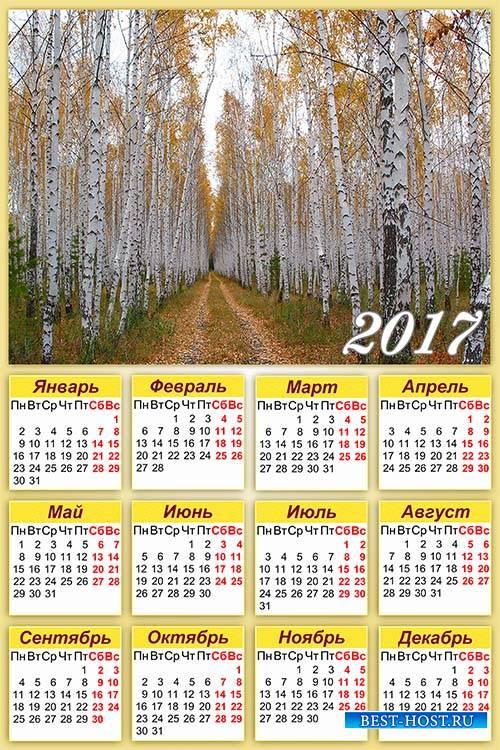 Настенный календарь на 2017 год - Осенняя березовая роща