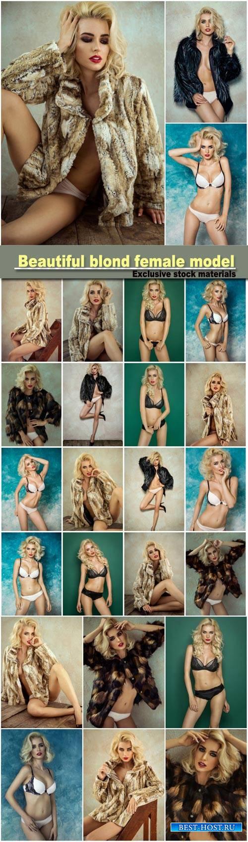 Beautiful blond female model wear fur, sexy female model posing in lingerie