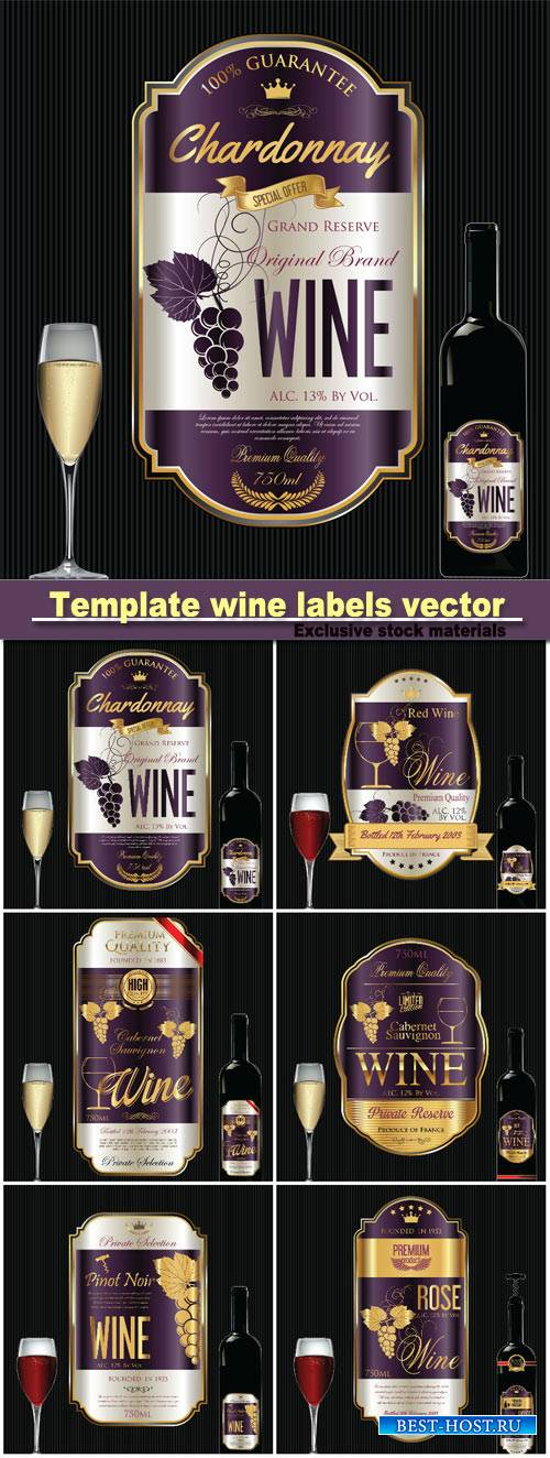Template wine labels vector