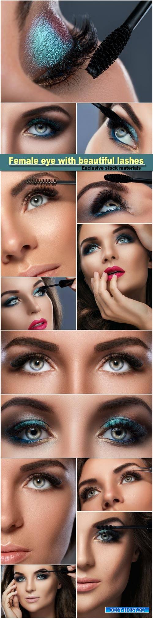 Female eye with beautiful long lashes, make-up