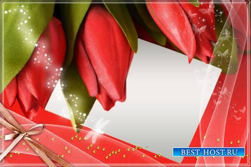 Рамка для фото - Очаровательные тюльпаны
