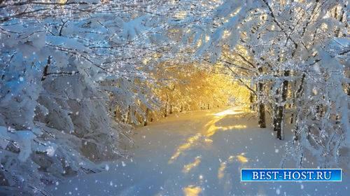 Футаж - Сказочный зимний лес