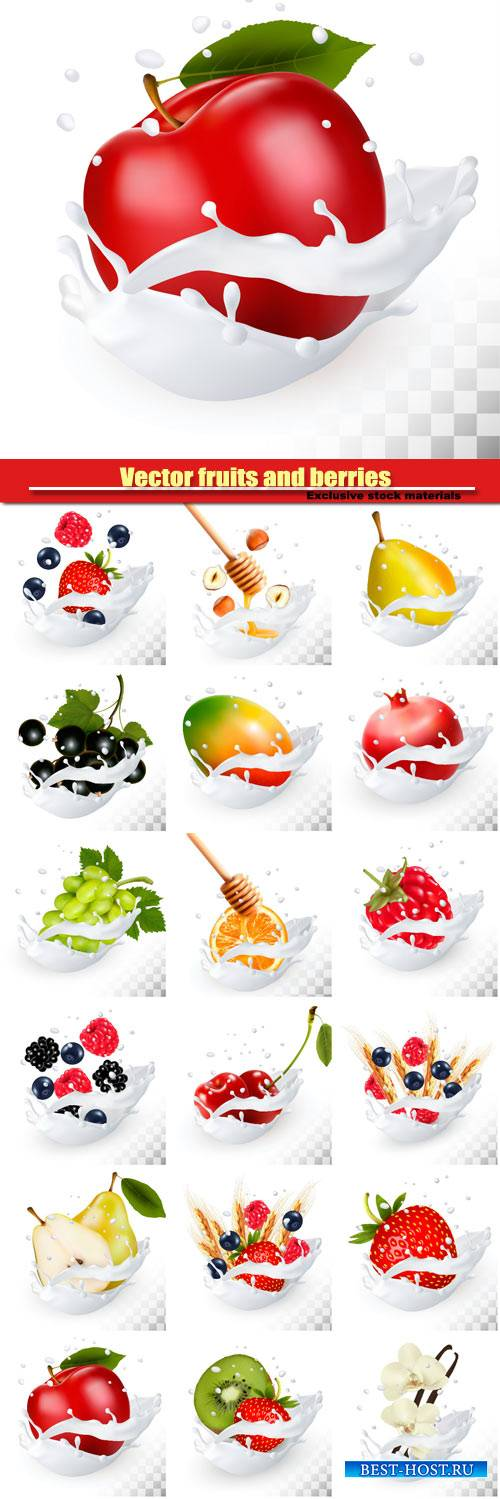 Vector fruits and berries in the splash of milk, raspberry and blueberry, b ...