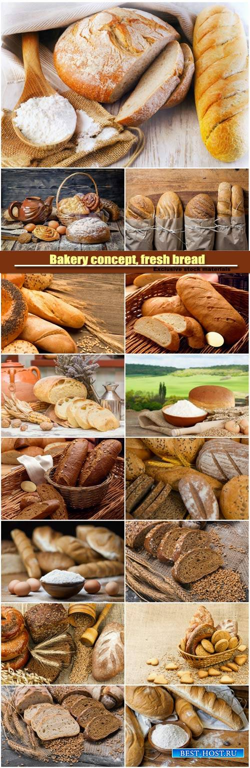 Bakery concept, fresh bread, sliced rye bread
