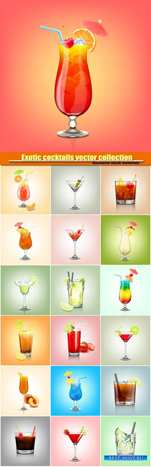 Exotic cocktails vector collection