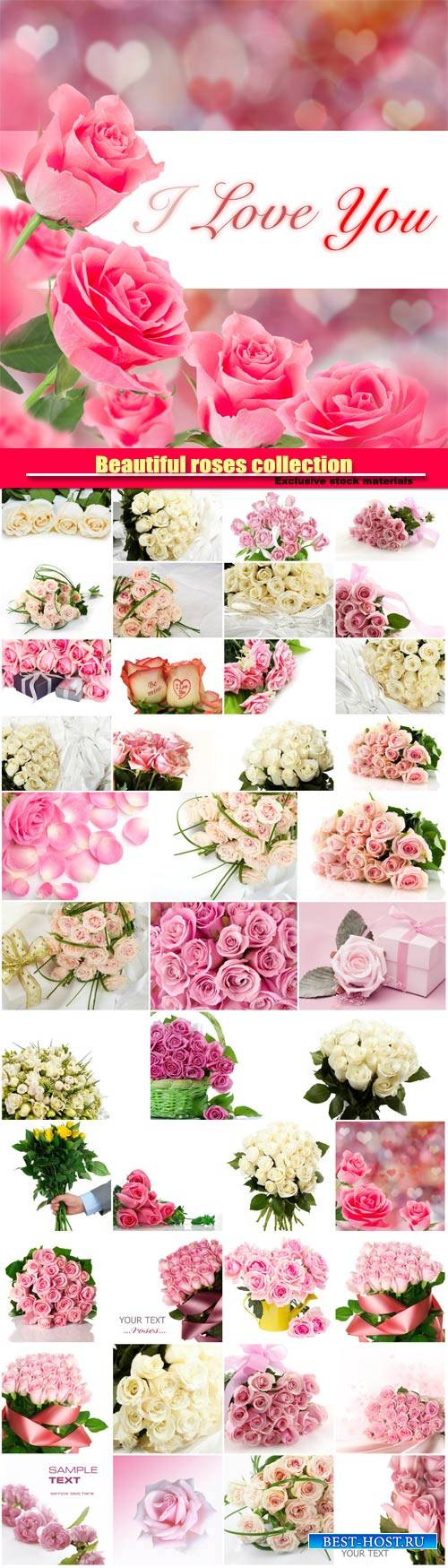 Beautiful pink and white roses, collection of romantic backgrounds