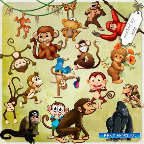 Клипарт - Очаровательные обезьянки
