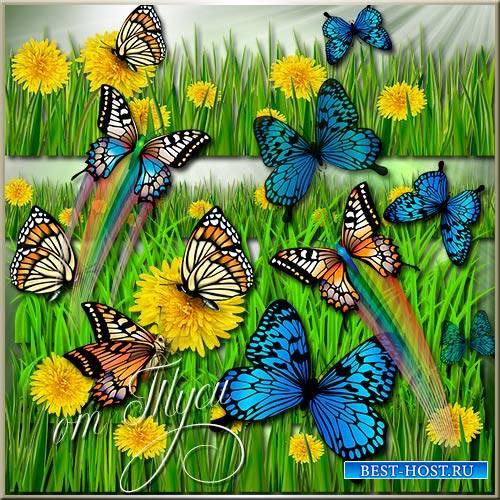 Клипарт - Трава, одуванчики, бабочки